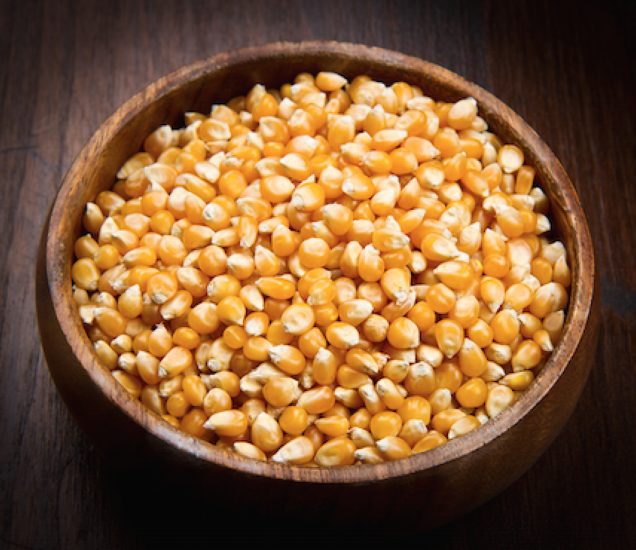 Whole Grain Maize In Dog Food