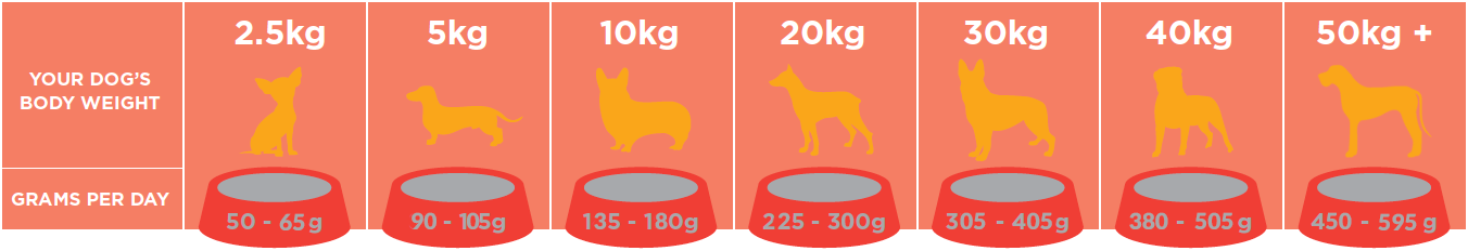 Salters_Energy_Dog_Food_Feeding_Guide2