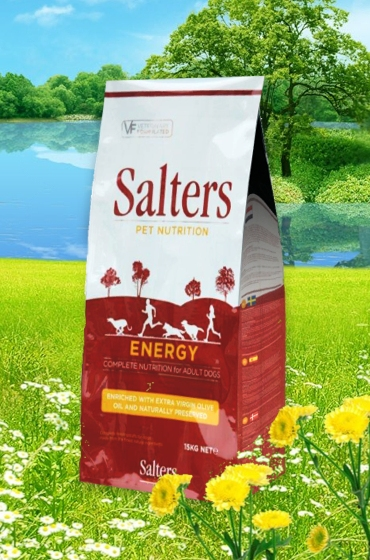 salters-senior-food-1