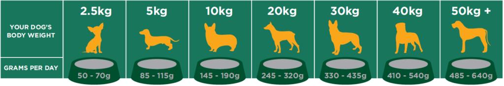 Salters Maintanance Dog Food Feeding Guide